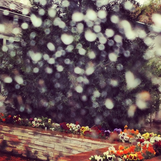 Raindrops on the window...